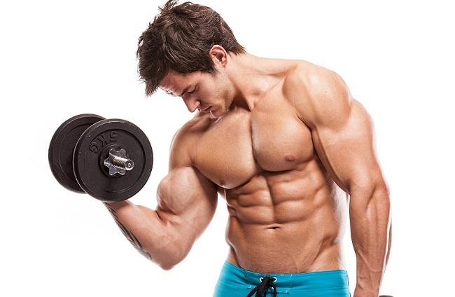 Trening za definiciju – Smernice i program vežbanja